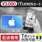 iTunes������ 3000 Apple �ץ�ڥ��ɥ����� ���� �ݥ���Ⱦò�