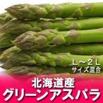 「北海道 グリーンアスパラ 送料無料」 北海道産 アスパラ (Lサイズ・2Lサイズ各500 g...