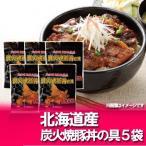 北海道 豚丼 簡単調理 豚丼の具 炭火焼 100g×5 化粧箱入 価格 3780 円 ぶたどん 北海道産 豚肉 使用