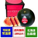 「送料無料 でんすけすいか 訳あり」北海道のすいか 当麻町特産品 でんすけすいか 優品 3L 1玉【でんすけすいか】