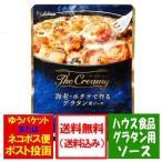「北海道 グラタン 送料無料 ソース」 北海道産 生乳100%の生クリーム使用の北海道 グラタンソース 250 g×1個 価格 500 円 ハウス食品のグラタン