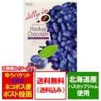 チョコレート ギフト 送料無料 ハスカップ チョコレート 価格 1000 円 ポッキリ 送料無料 チョコ ハスカップ ちょこれーと
