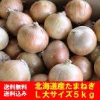北海道 玉ねぎ 5kg 送料無料 玉葱 北海道産 タマネギ 5kg L大サイズ 価格 2000 円 ポッキリ 送料無料 北海道 たまねぎ