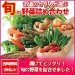 野菜セット 送料無料 野菜詰め合わせ セット 価格 4980円 旬の野菜セットを贈答品で北海道...