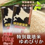 米 10kg「北海道産米 10kg 送料無料」ゆめぴりか 10kg (米 令和2年) 特別栽培米 有機肥料使用「ゆめぴりか 米」 ゆめぴりか10kg (5kg×2) 価格 6000 円