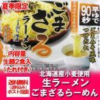 「北海道 つけ麺 送料無料 生麺」 北海道産小麦粉を使用した ごま ざるラーメン2食 つゆ付 価格 600円 「送料無料 ざるラーメン」つけ麺 スープ 冷たいラーメン