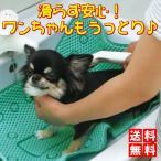 ペット すべりにくい ワンだ 風呂 シャンプーマット 愛犬 ストレス お悩み 解消 送料無料