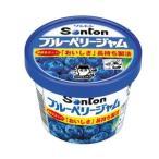 ソントン食品 Fカップブルーベリージャム 135g×6入