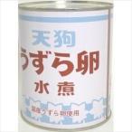 天狗 うずらの卵水煮(業務用) 2号×1缶