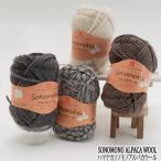 毛糸 セール 極太 ハマナカ ソノモノアルパカウール ウール 在庫商品