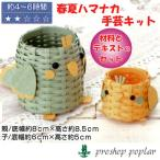 Yahoo!毛糸のプロショップポプラハマナカ H360-234 インコの親子の小物入れ