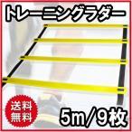 トレーニングラダー 5メートル プレート9枚