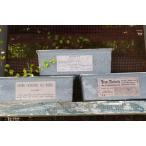 ハンドメイド 多肉植物寄せ植えに リメイクパウンド型 ブルーグレー
