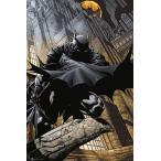 アメリカン・コミックスを代表する人気ヒーロー!バットマン