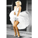�ޥ��󡦥������ݥ�������Marilyn Monroe Seven Year Itch���ե졼����