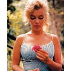 �ޥ��󡦥������ݥ�������Marilyn Monroe  Blue dress holding flower���ե졼����