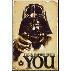 スターウォーズ ポスターフレームセット STAR WARS Empire Needs You