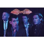 【送料¥290〜】 アークティック・モンキーズ ポスター Arctic Monkeys Group(150225)