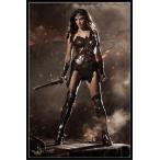 バットマン vs スーパーマン ジャスティスの誕生 ポスターフレームセット Batman V Superman (Wonder Woman)(160204)
