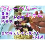 ブルーベリージャム 無農薬・有機肥料・除草剤不使用・無添加手作り・白砂糖不使用