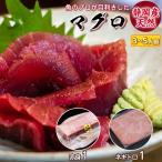 静岡県産 メバチ マグロ 赤身とネギトロ のセット 送料無料|海鮮 刺身 冷凍マグロ 柵 冷凍 魚 食べ物 赤身 ねぎとろ 産地直送 まぐろ 鮪 産直