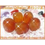 【50%OFF!】天然石パワーストーンタンブルカーネリアン(紅玉髄)【濃オレンジ系・最上級!】SLサイズ×1個PowerStone/GemStoneC
