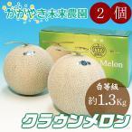 静岡産クラウンメロン白等級2個  約1.3Kg×2