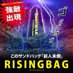 ライジングバッグ (自立するスタンディングサンドバッグ スタンド型 パンチ キック コンビネーション トレーニング 格闘技)