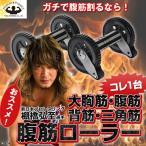 MuscleProject(マッスルプロジェクト)腹筋ローラー2個セット(新日本プロレスリング,棚橋弘至選手おススメ,筋トレ,筋肉アップ,Wローラー)