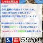 北海道釧路町 仙鳳趾産 サイズ色々殻つき牡蠣5キロセット 30〜45個(目安) 北の味倶楽部 せんぽうし センポウシ ほっかいどう かき カキ 規格外