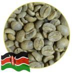 レイトンズコーヒー コーヒー豆 ケニア 300g 本格 焙煎 珈琲 豆 生豆