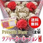 Yahoo!Present Bear ヤフーショップ母の日 花束 カーネーション くま束 プレセント ギフト サプライズ 送料無料 国内製作 <ラブリーカーネーション(レッド)> (くま11匹)