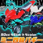 ミニ 四輪バギー 50cc 45km/h エンジン ミニカー アウトドア 混合ガソリン ブラック ホワイト レッド ブルーレース サーキット ご自宅でお庭でレース!