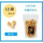 七越製菓 揚げもち これうま 塩味 145g×12袋 70530