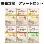スープ 介護食 栄養支援 6種類×各5個セット ホリカフーズ 栄養 介護 流動食 食事
