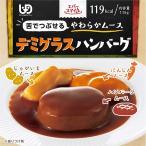 介護食 エバースマイル ムース食 デミグラスハンバーグ 18個セット ES-M-4 常温保存 レトルト おかず 洋食