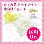 ミニ かすみ草 咲いたもの プリザーブドフラワー  イエロー ホワイト