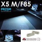 BMW M5 X5 F85 カーテシ フットライト 室内灯 ルームランプ レーシングダッシ製 純正LED交換タイプ 5605887W