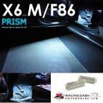 BMW M6 X6 F86  カーテシ フットライト 室内灯 ルームランプ レーシングダッシ製 純正LED交換タイプ 5605887W