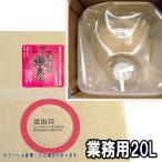 消臭剤 消臭 抗菌 抗酸化 銀次郎 業務用 20L 送料無料