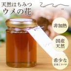 UU ニホンミツバチ 蜂蜜 梅の花の 濃厚 天然はちみつ 国産 非加熱 希少な日本蜜蜂の 純粋ハチミツ 日本製 ユーユー