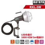 ハタヤ 屋外用防雨型 LED作業灯(投光器) 42W RXL-5W (株)ハタヤリミテッド