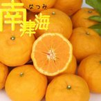 話題の新品種みかん『南津海(なつみ)』 接ぎ木13.5cmポット苗