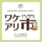 ショッピング在庫処分 【訳あり・在庫処分】いちごの木ストロベリーツリー 15cmポット苗