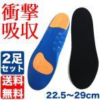 2足セット 22.5〜29cm対応 サイズ調整 インソール 衝撃吸収 中敷き クッション 靴 メンズ レディース スニーカー ブルー  日本郵便送料無料 PK2