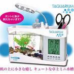 アクアリウムセット 卓上ミニ水槽セット【TAQUARIUM(タクアリウム)】