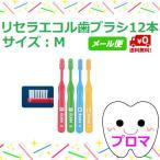 ◆送料無料(メール便)◆リセラ エコル 幼児〜小学生用歯ブラシ M(ふつう) 12本セットアソート
