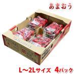 福岡県産いちご あまおう 秀品・Lサイズ 270g×4パック