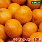【送料無料】和歌山県産 下津みかん(しもつみかん)秀品 Mサイズ 10kg