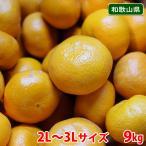 【送料無料】和歌山県産 下津みかん(しもつみかん)秀品 Sサイズ 10kg
